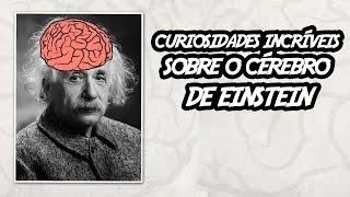 Curiosidades Incr veis sobre o C rebro de Einstein