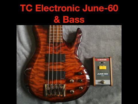 TC Electronic June-60 & Basse
