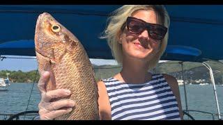 77 Рыбалка на карибах с яхты Стояли в манграх ловили рыбу в карибском море поймали