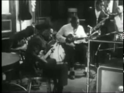 Howlin' Wolf - Down In The Bottom - live 1966
