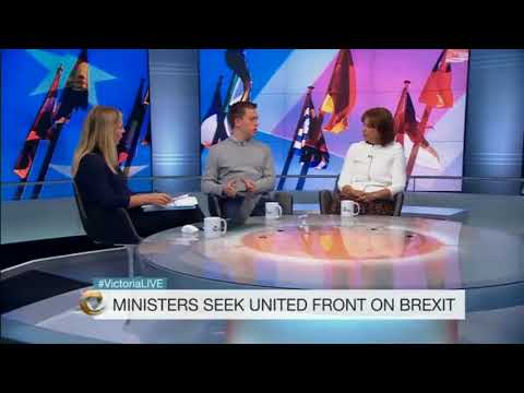 Brexit fallout: infighting, chaos and a new customs union