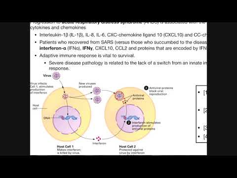 How Can Coronavirus Harm You? | SARS-CoV-2 Pathophysiology