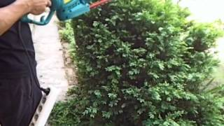 видео Электрический аэратор Sadko ES 1500 для садового газона купить с бесплатной доставкой