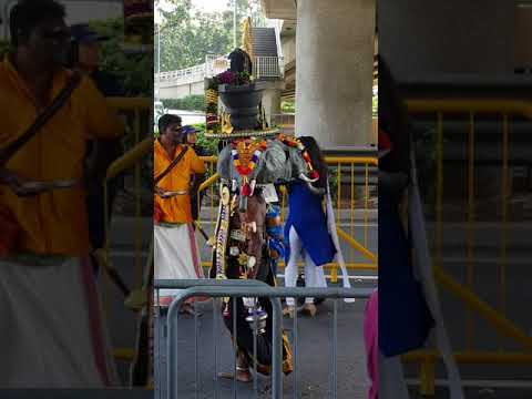 Thaipusam singapore 2018 very creative nice and simple