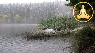 Snow And Rain On A Lake (30 min) - Relax Ambient TV - HDTV