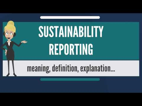 What Is SUSTAINABILITY REPORTING? What Does SUSTAINABILITY REPORTING Mean?