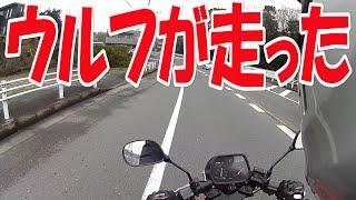 ウルフ50のエンジンO/H④最終回 【まーさんガレージ】No.42