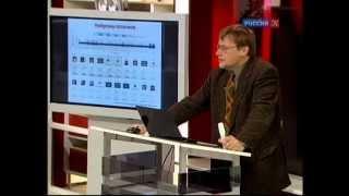 Константин Анохин - Внутри Вавилонской библиотеки мозга. 2-я лекция