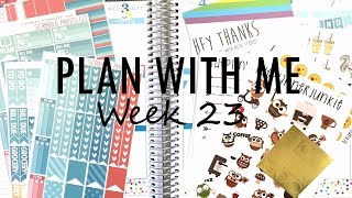 Plan with Me: Week 23 Set-up + Etsy Sticker Haul | MandyPlans