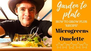 Microgreens Simple How to Grow Garden to Plate Recipe