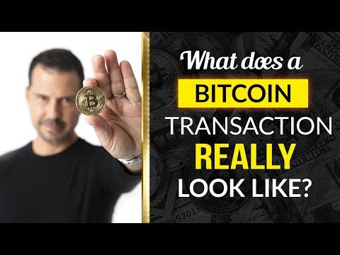 What Does A Bitcoin Transaction Really Look Like?  - George Levy