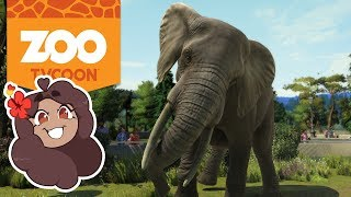 Bumpy Rides for Our Elephants?! 🦁 Zoo Tycoon: Ultimate Animal Collection • #12
