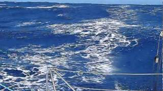 Sailing Alone Around the World - Andy Lepiarczyk - Mighty Chicken -