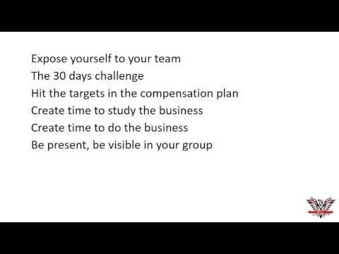 Primary Business Orientation