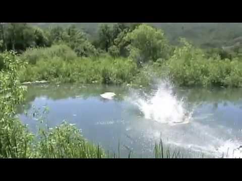 Bike Jumping into pond (Alpine Utah)