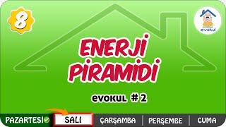 Enerji Piramidi  8.Sınıf uzaktanegitim evokul Kampı