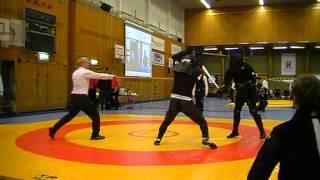 Swordfish2012 - Longsword 32 R. Molin vs. G. Brezinski