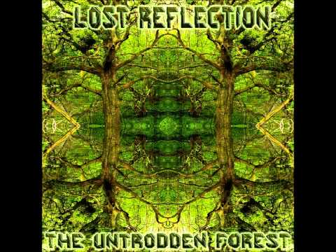 Lost Reflection -- Unanswered Questions