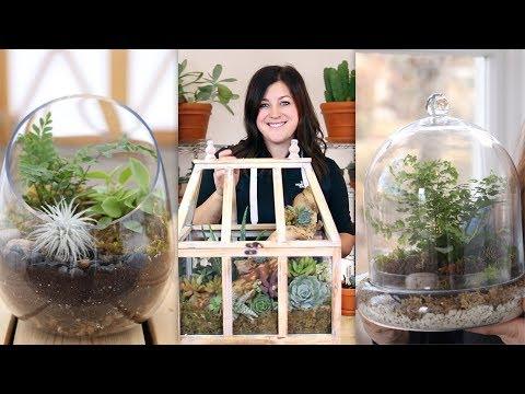 3 Ideas For Terrariums! 🌿