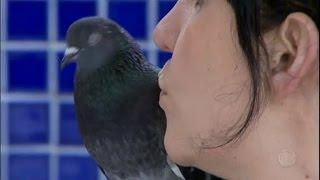 Família trata pombos como animais de estimação