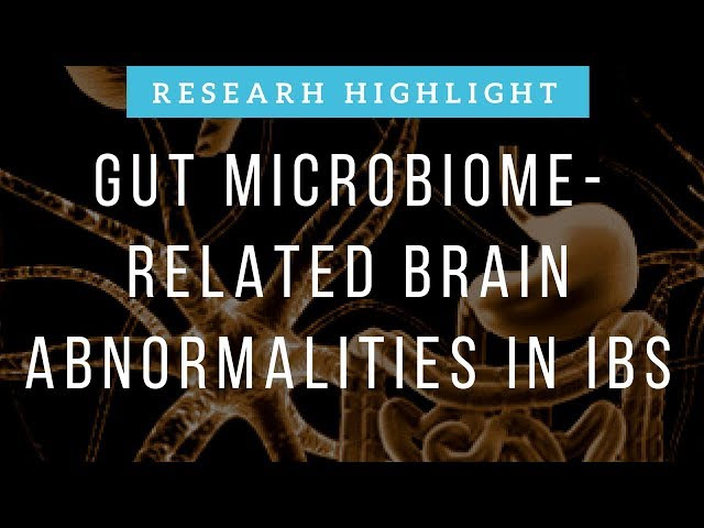Gut Microbiome-Related Brain Abnormalities in Irritable Bowel Syndrome | Research Highlight