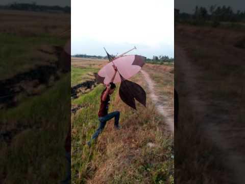 How to fly wau kangkang