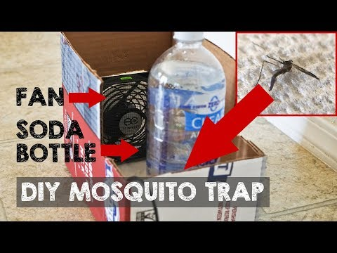 DIY Mosquito Trap that Actually Catches Mosquitoes