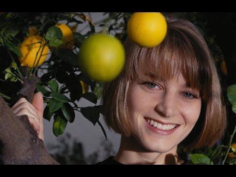 🎭 Бриджит Фонда (Bridget Fonda TOP 10 Films)