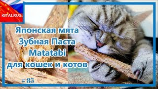 Зубная Паста Matatabi для кошек и котов Японская мята для кошек #85