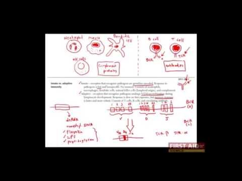First Aid for the USMLE Step 1, IMMUNOLOGY + 01 = Overview of the immune system