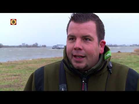 Extrem hoogwater in Biesboschpolder de Noordwaard