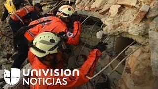 Vea por qué los topos son responsables de una gran cantidad de rescates tras el terremoto