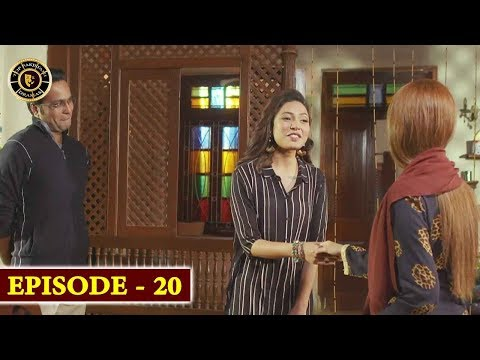 Gul-o-Gulzar Episode 20 | Top Pakistani Drama