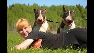 Фестиваль рабочих собак RealityDog 12-13 мая 2018 в Горыныче