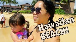 BEAUTIFUL HAWAIIAN BEACH! - October 08, 2014 - itsJudysLife Daily Vlog