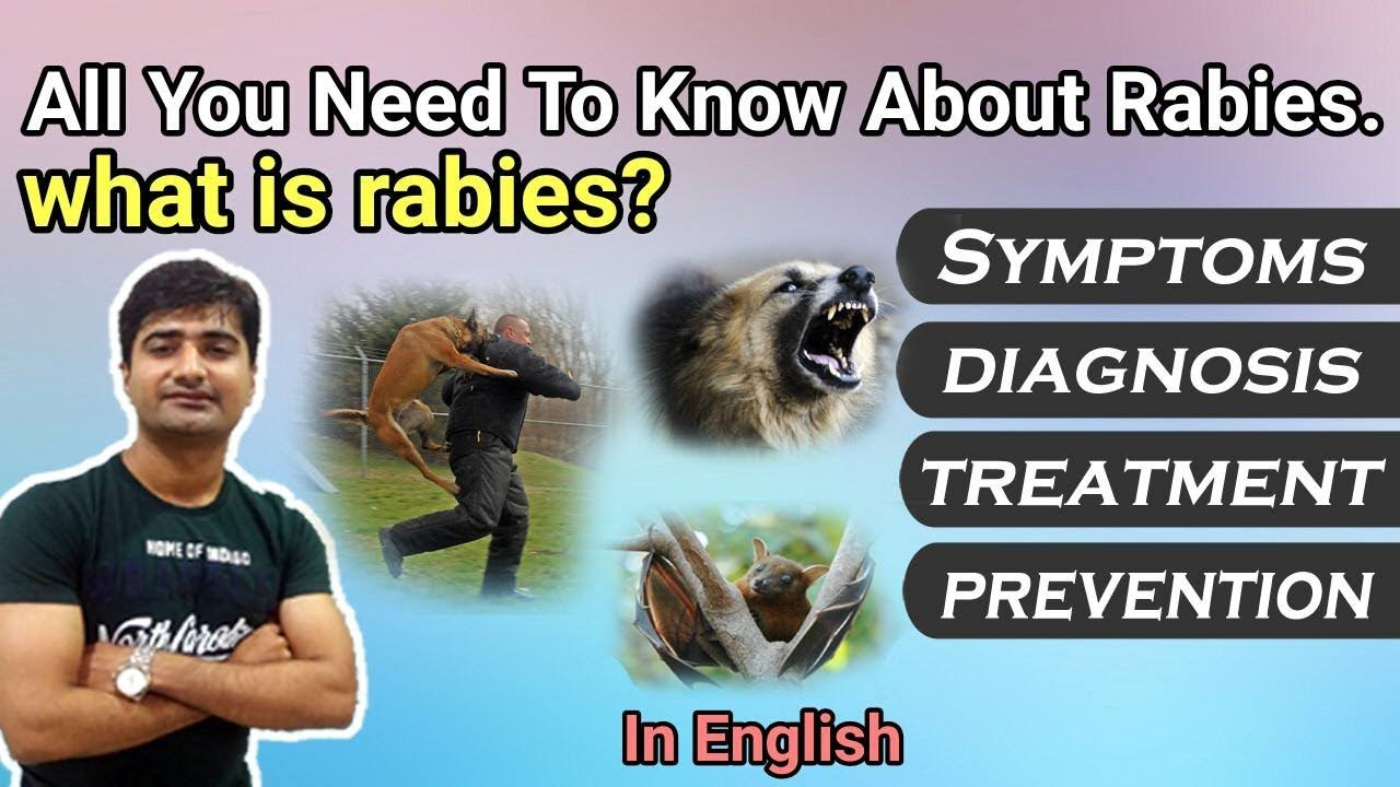 the signs symptoms and prevention of rabies Disease listing learn more about signs and symptoms the early symptoms of rabies include malaise, alternating periods of irritability and anxiety.
