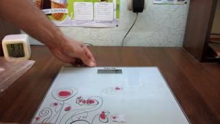Обзор напольных весов Mirta