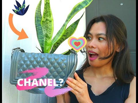 pasocial-|-diy-handbag-planter-(chanel-dupe)