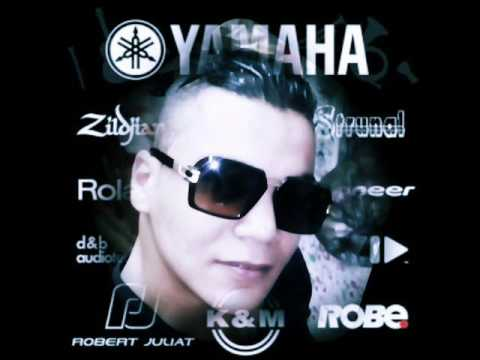 Cheb Walid Sollitaire By DJ Ilyes 2017 3a9liat 3alam dar
