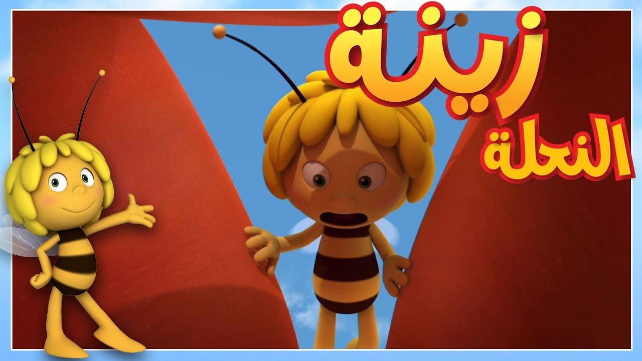 مايا النحلة - الورطة