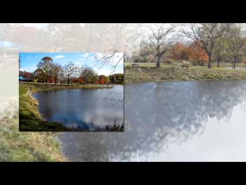 A Walk Through Holmdel Park New Jersey