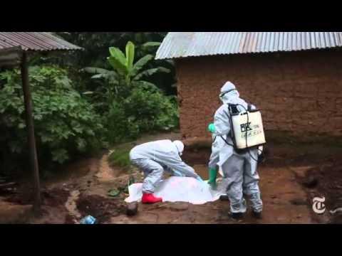 Ebola Virus Outbreak 2014 | Virus Ebola 2014