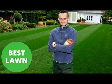 Accountant's Lawn Named Best In Britain Despite Him Not Getting His Fingers Dirty