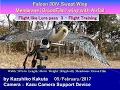 Falcon 30iV  : Flight like Lure pass 3? Flight Training