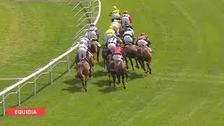 Vidéo de la course PMU PRIX HUNYADE