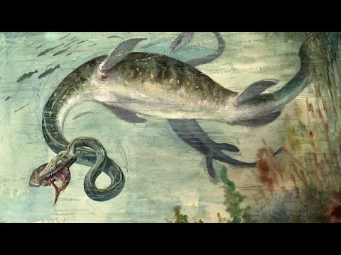 25 Strangest Prehistoric Creatures To Rule The Earth