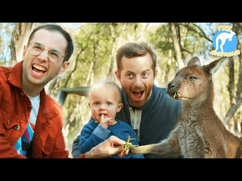 The Try Guys Become Zookeepers For A Day  Try Australia