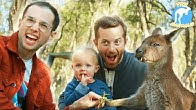 The Try Guys Become Zookeepers For A Day • Try Australia