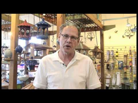 GPTT 2011: Backyard Bird Shop