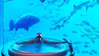 Top 10 Spectacular Underwater Hotels in the World